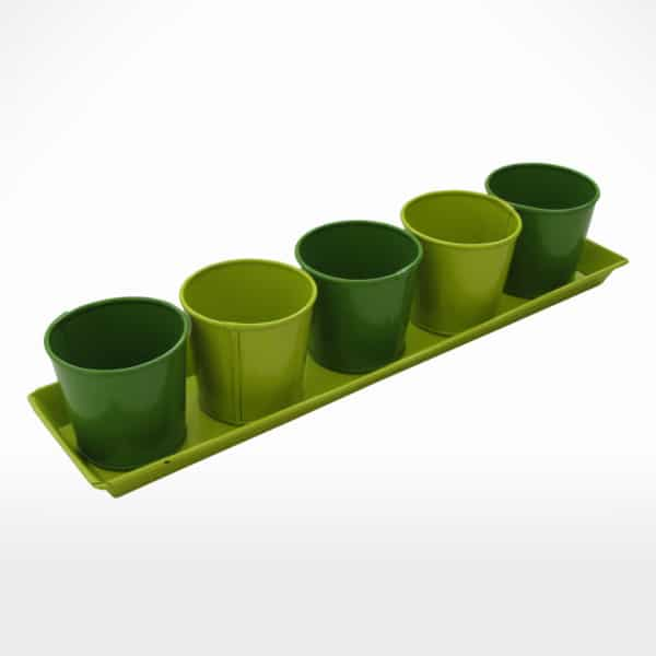 5 Planter with Tray  by Noah's Ark